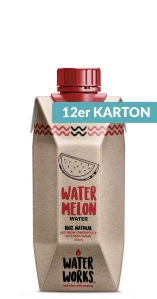 Water Works - Wassermelone Drink 0,33l Tetra-Pak (12er Karton)
