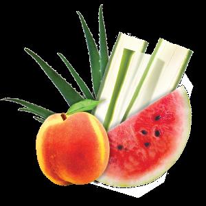 ALO Drink - COMFORT, Aloe Vera, Wassermelone und Pfirsich - 0,5l (Einzelflasche)