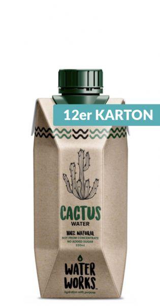 Water Works - Kaktuswasser, Kaktus Drink 0,33l Tetra-Pak (12er Karton)